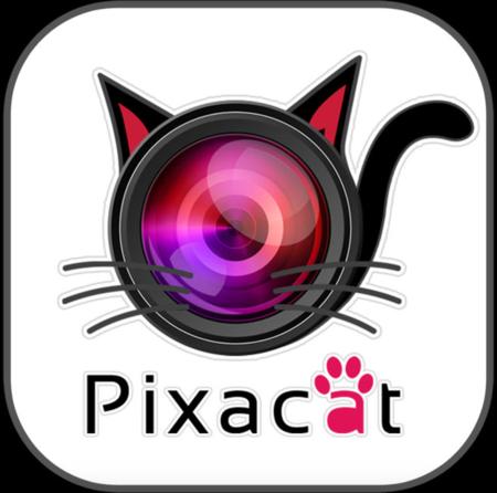 Pixa Cat